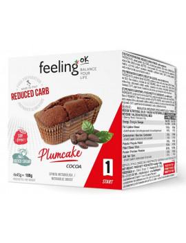 FEELING OK PLUM CAKE CAC 4X45G