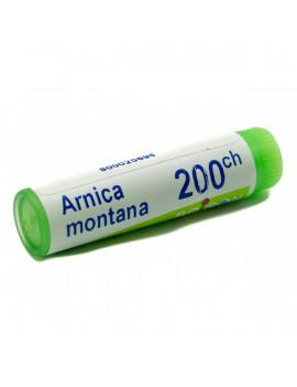 ARNICA MONTANA 200CH GR